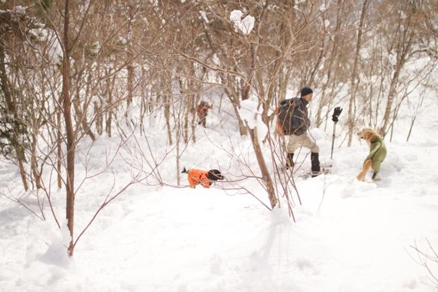 2012.01.29バチュマリアージョの丘