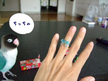 044_20121012193929.jpg
