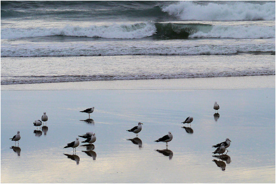 うみねこ砂浜にて