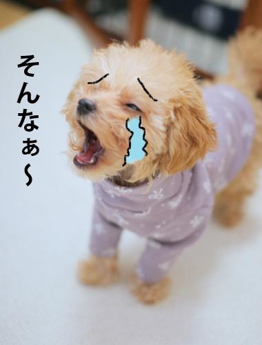 I号泣べべちゃん