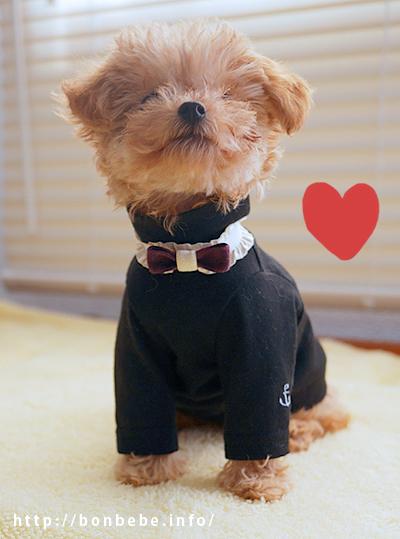 ハンドメイド 犬 ネックレス