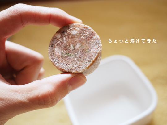 トイプードル 生食