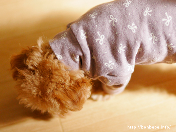 ハンドメイド 犬服