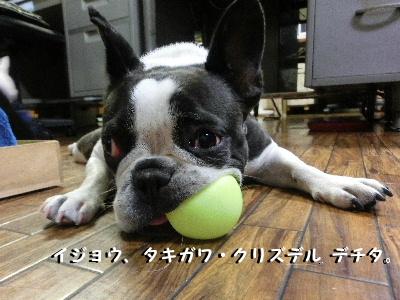 2012_101410月14日平野郷0032