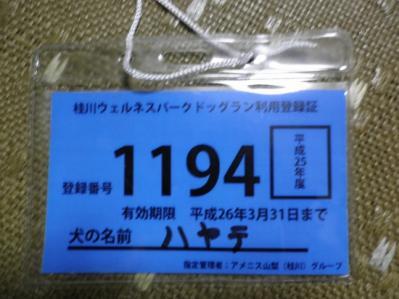 P9080182.jpg