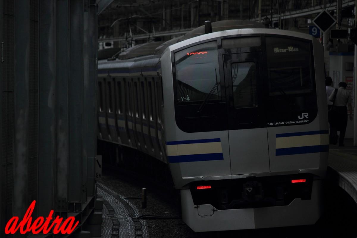 E217系 武蔵小杉にて