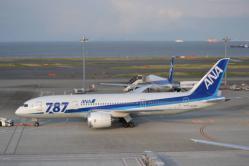 ANA 787 普通塗装