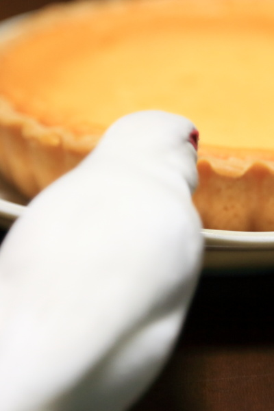 omiyage cheesecake (3)