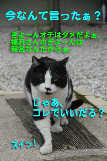 IMG_0105_Rじゃあコレで