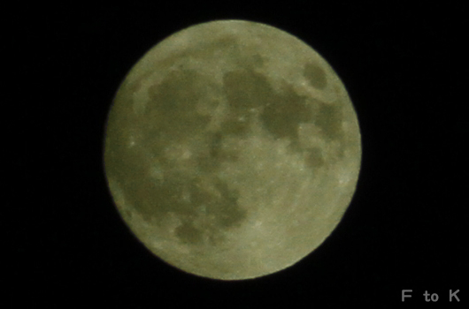IMG_0480super moon_RY