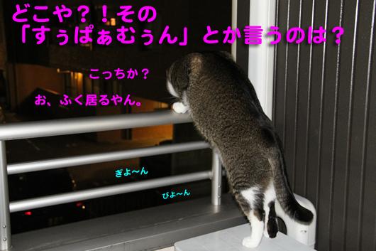 IMG_0498_Rすぅぱぁむぅん