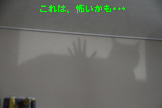 IMG_0510_Rこれは怖いかも