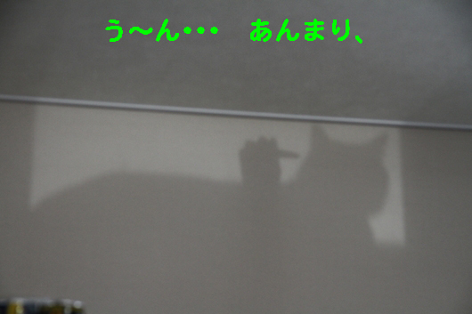 IMG_0511_Rう~ん、あんまり