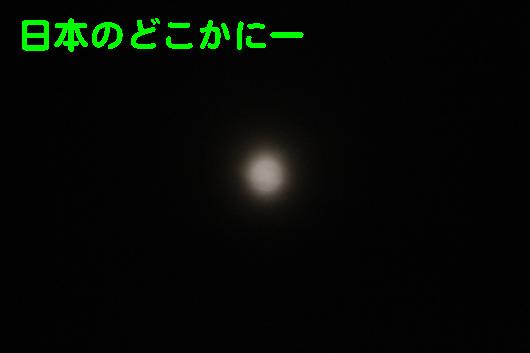 IMG_0236_R日本のどこかに