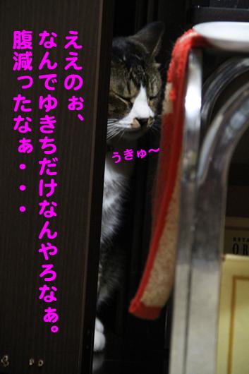 IMG_0138_Rええのぉ腹減った