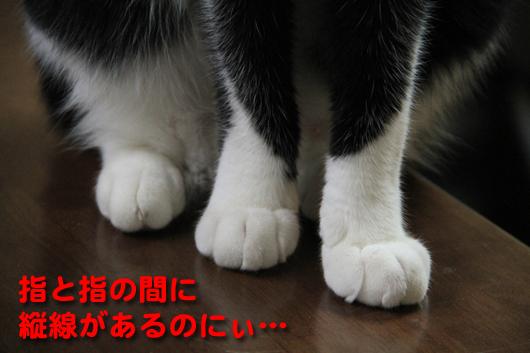 IMG_0029_R指と指の間に縦線