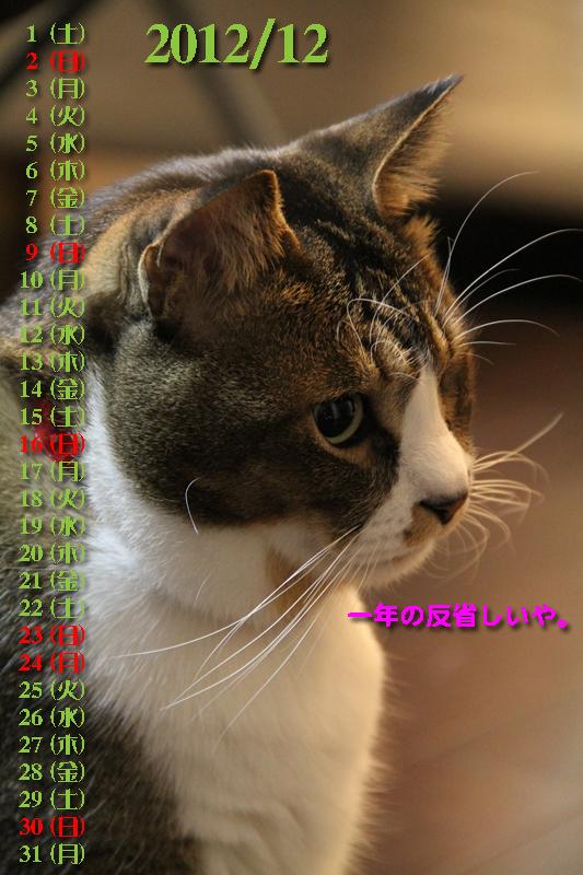 IMG_0296_Rブン201212カレンダー