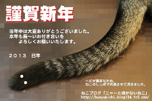 IMG_0210モザ_R年賀状