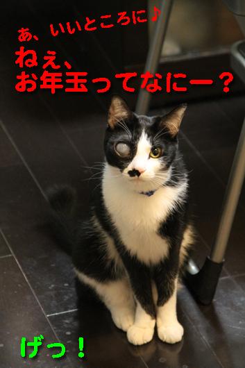 IMG_0033_Rお年玉ってなにー?