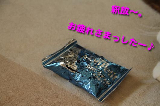IMG_0306_R釈放~お疲れ~♪
