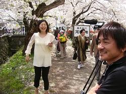 2桧木内川の桜のトンネルって人が多くて困っちゃう。ニコニコ