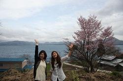 9田沢湖と桜のコラボ