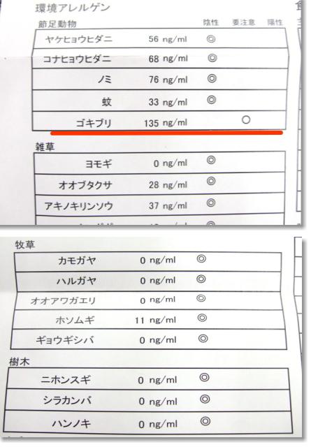 アレルギー検査結果 (2)