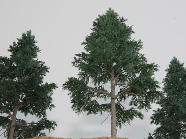リアルツリー・深緑の針葉樹(150)