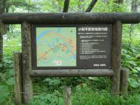 小梨リゾート038