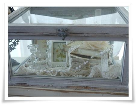 glasscase2.jpg