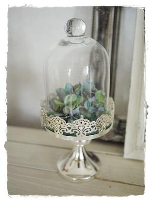 glassdome1.jpg