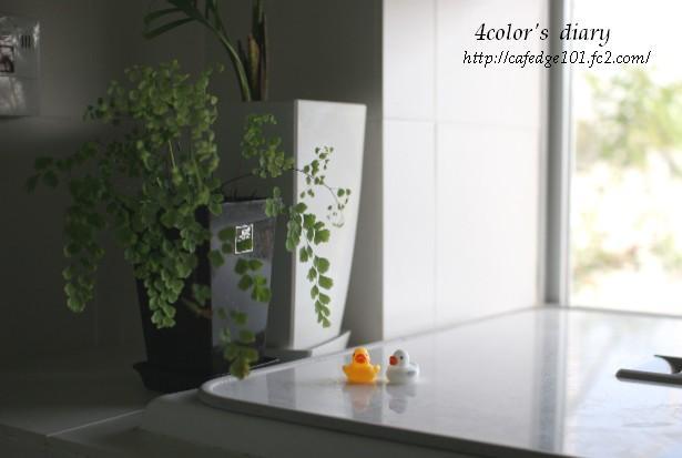 浴室その後2