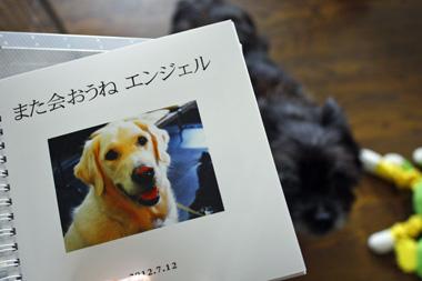 02フォトブック のコピー