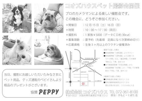 犬ポートレート撮影会A4_うらB