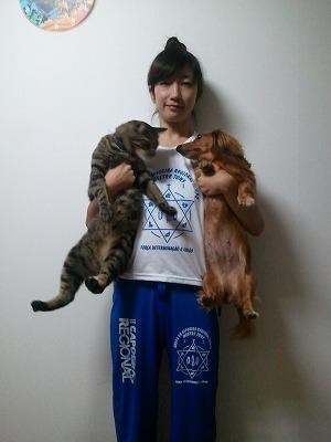 猫嫌がってますね