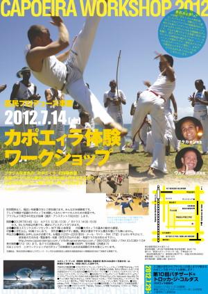 300_capoeira_ws2012.jpg
