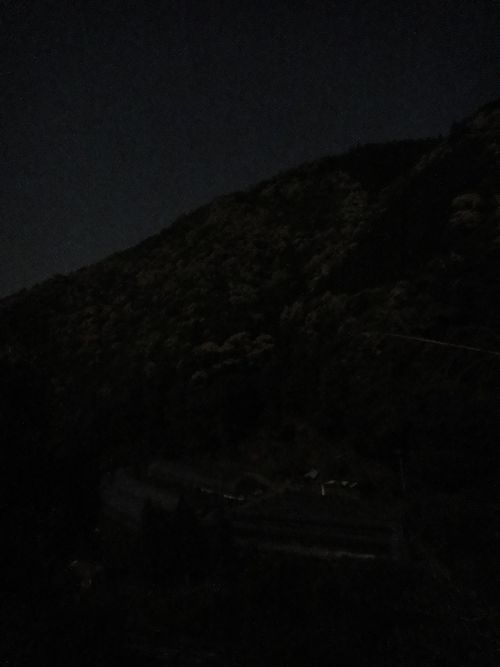 20120507d.jpg