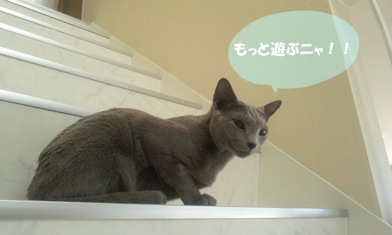 20120514_091126.jpg
