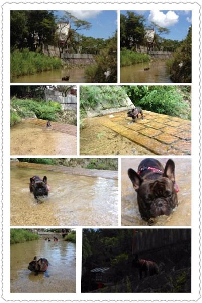 fc2blog_201208312220579e0.jpg