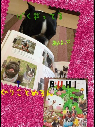 fc2blog_20120928212321894.jpg