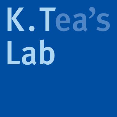 KT_Lab_logo_3D.jpg