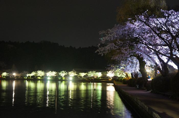 20120421-13.jpg