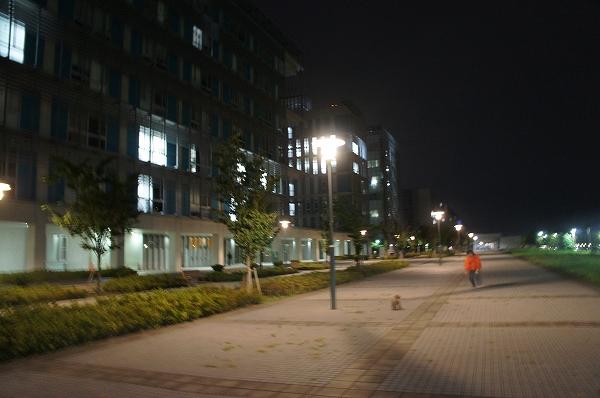 20120922-11.jpg