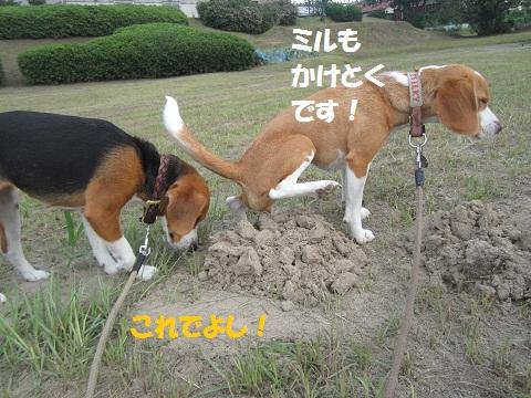 001_20120715124841.jpg
