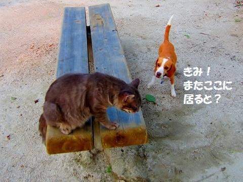 001_20120725135027.jpg