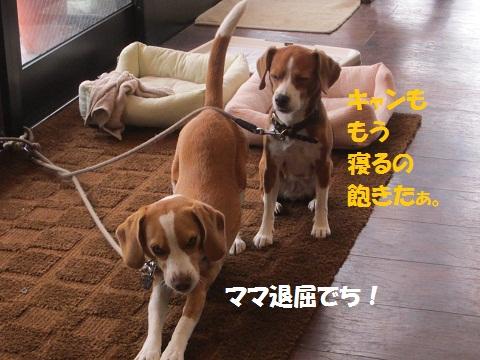 001_20120814152021.jpg