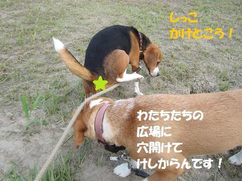 004_20120715124842.jpg