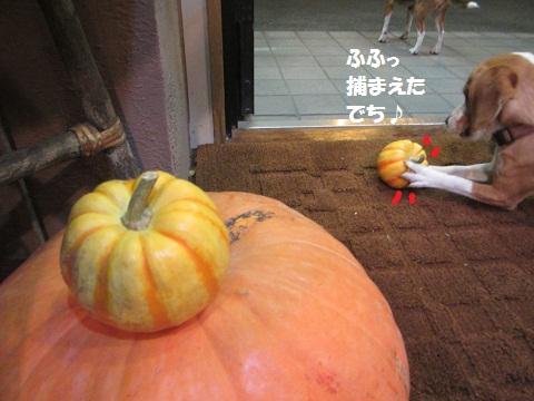 004_20121017115835.jpg