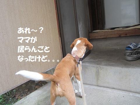 007_20120721131112.jpg