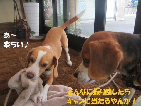 010_20120708110527.jpg